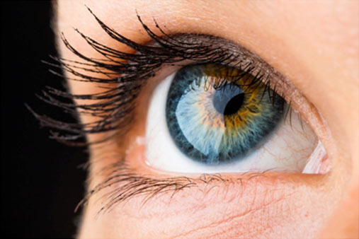 What can your eyes tell you about your health?