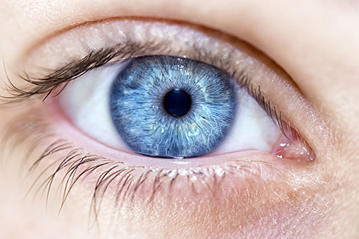 20 Weird Facts About Eyes