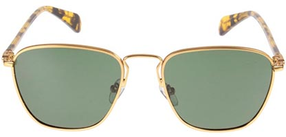FGC Charlie C03 G15 Polarised